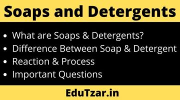 Soaps and Detergents | साबुन और अपमार्जक | Difference Between Soap and Detergent