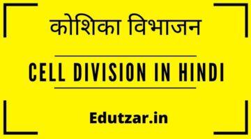 Cell Division in Hindi – कोशिका विभाजन | कोशिका विभाजन के प्रकार