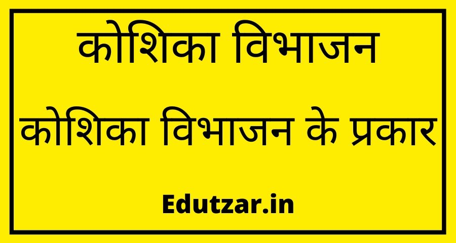 Cell Division in Hindi