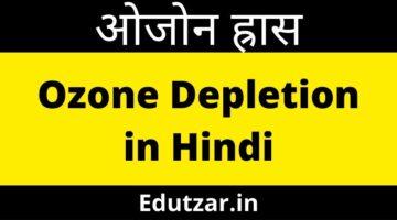 ओजोन ह्रास – Ozone Depletion in Hindi