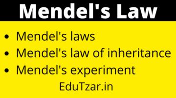 Mendel law in hindi | मेण्डल के वंशागति के नियम | Mendel's law of inheritance