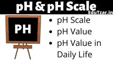 pH Scale in Hindi – पी.एच. स्केल | pH | pH परास | pH के दैनिक जीवन में उपयोग