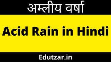 अम्लीय वर्षा – Acid Rain in Hindi | अम्ल वर्षा के कारण : प्रभाव एवं रोकथाम