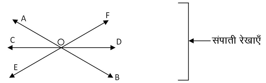 संपाती रेखाएँ