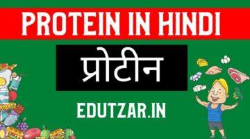 Protein in Hindi – प्रोटीन | प्रोटीन्स का वर्गीकरण | प्रोटीन का संगठन