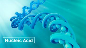 न्यूक्लिक अम्ल – Nucleic Acid in Hindi