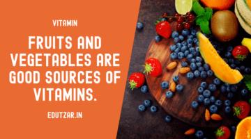 विटामिन – Vitamin in Hindi
