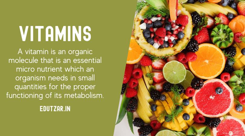 Definition of vitamin