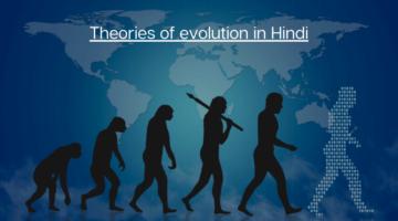 जैव विकास के सिद्धान्त – Theories of evolution in Hindi | लैमार्कवाद, डार्विनवाद, नवडार्विनवाद, उत्परिवर्तनवाद
