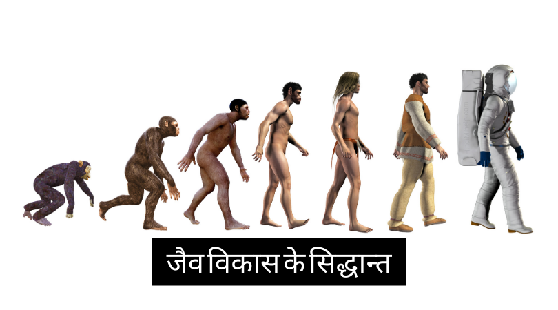 Theories of evolution in Hindi