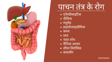 पाचन तंत्र के रोग – Diseases of Digestive System in Hindi