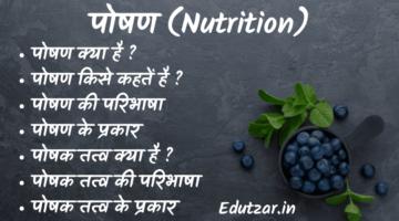 पोषण किसे कहते हैं : पोषण की परिभाषा क्या है, पोषण के प्रकार और वर्गीकरण – What is Nutrition in Hindi